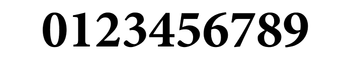 Minion Pro Bold Subhead Font OTHER CHARS