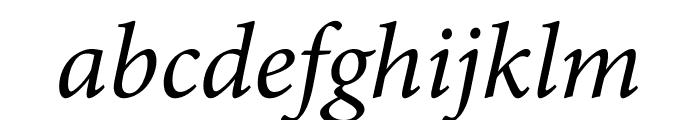 Minion Pro Cond Italic Display Font LOWERCASE