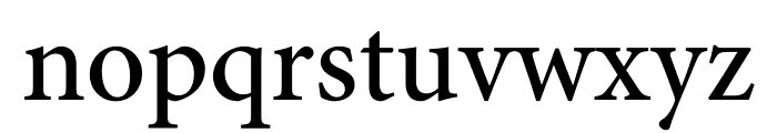 Minion Pro Medium Cond Display Font LOWERCASE
