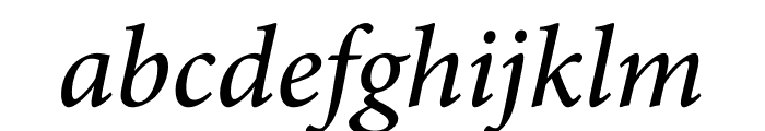 Minion Pro Medium Cond Italic Subhead Font LOWERCASE