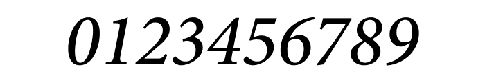Minion Pro Medium Italic Display Font OTHER CHARS