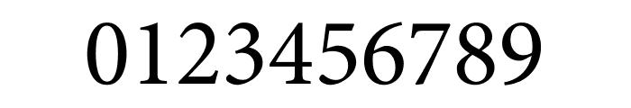 Minion Pro Subhead Font OTHER CHARS