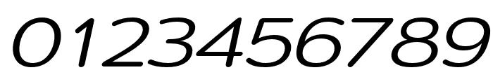 Montag Regular Oblique Font OTHER CHARS