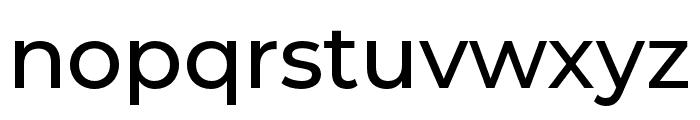 Montserrat Alternates Medium Font LOWERCASE