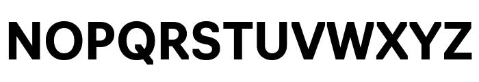 Navigo Bold Font UPPERCASE