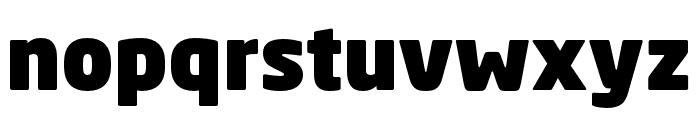 Neo Sans W1G Black Font LOWERCASE
