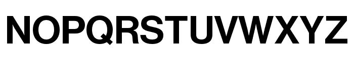 Neue Haas Grotesk Display Pro 65 Medium Font UPPERCASE