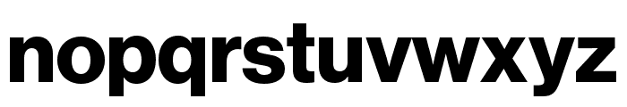 Neue Haas Grotesk Display Pro 75 Bold Font LOWERCASE
