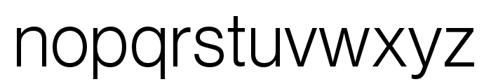 Neue Haas Grotesk Text Pro 55 Roman Font LOWERCASE