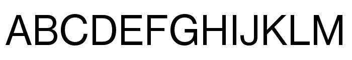 Neue Haas Grotesk Text Pro 65 Medium Font UPPERCASE