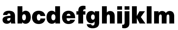 Neue Haas Unica W1G Black Font LOWERCASE