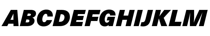 Neue Haas Unica W1G ExtraBlack Italic Font UPPERCASE