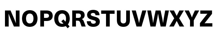 Neue Haas Unica W1G Heavy Font UPPERCASE