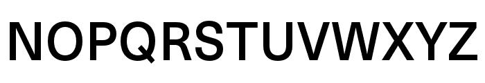 Neue Haas Unica W1G Medium Font UPPERCASE