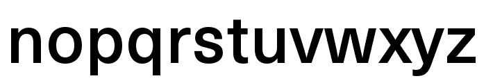 Neue Haas Unica W1G Medium Font LOWERCASE