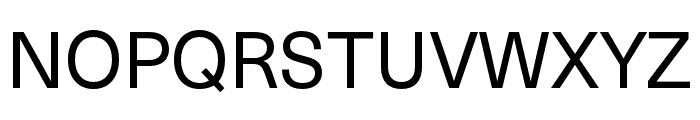 Neue Haas Unica W1G Regular Font UPPERCASE
