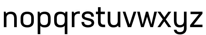 Neusa Next Std Condensed Regular Font LOWERCASE