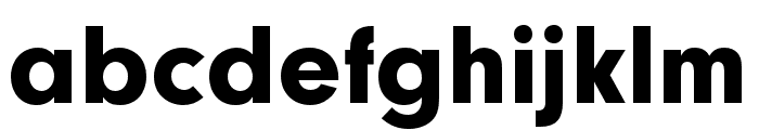 Neuzeit Grotesk ExtCond Black Font LOWERCASE