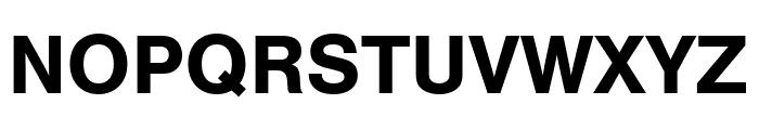 Nimbus Sans Bold Font UPPERCASE
