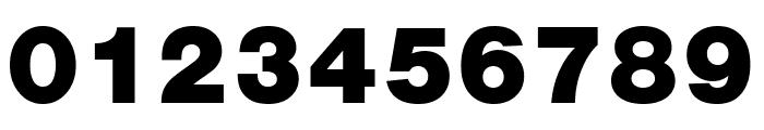 Nimbus Sans Cond L Black Font OTHER CHARS