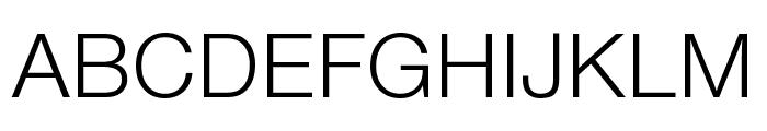 Nimbus Sans DV Light Font UPPERCASE