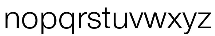 Nimbus Sans DV Light Font LOWERCASE