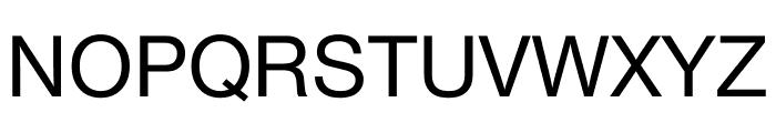 Nimbus Sans DV Regular Font UPPERCASE