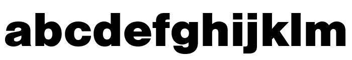 Nimbus Sans Extd Black Font LOWERCASE