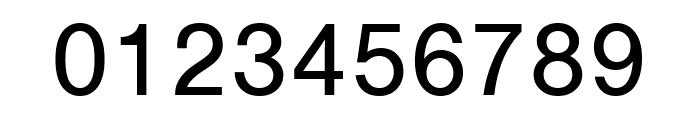 Nimbus Sans Extd Regular Font OTHER CHARS