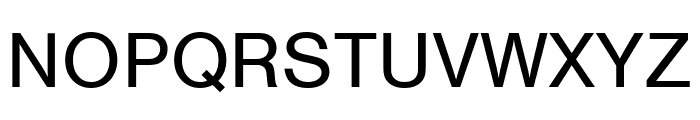 Nimbus Sans Extd Regular Font UPPERCASE