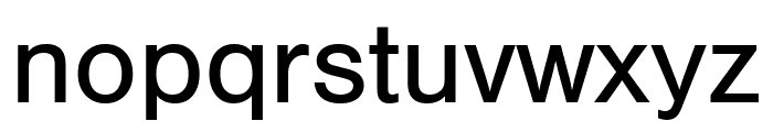 Nimbus Sans Mono M Regular Font LOWERCASE