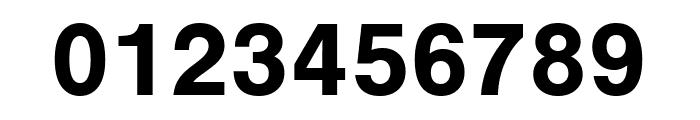 Nimbus Sans Round Bold Font OTHER CHARS