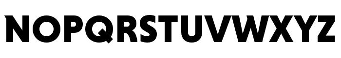 Niveau Grotesk Black Font UPPERCASE