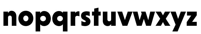 Niveau Grotesk Black Font LOWERCASE