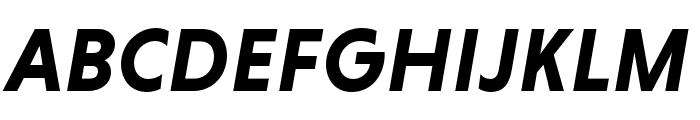 Niveau Grotesk Bold Italic Font UPPERCASE