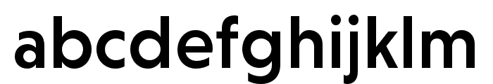 Niveau Grotesk Medium Font LOWERCASE