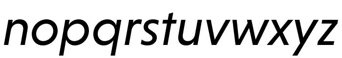 Niveau Grotesk Regular Italic Font LOWERCASE