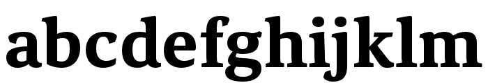 Noam Text Bold Font LOWERCASE