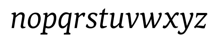 Noam Text Italic Font LOWERCASE
