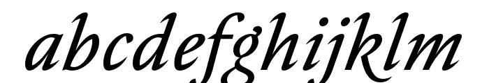 Nocturne Serif Light Italic Font LOWERCASE