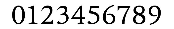 Nocturne Serif Light Font OTHER CHARS