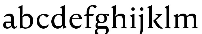 Nocturne Serif Light Font LOWERCASE