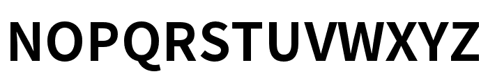Noto Sans CJK KR Bold Font UPPERCASE