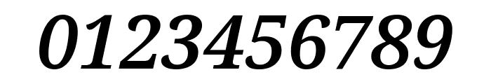 Noto Serif Condensed SemiBold Italic Font OTHER CHARS