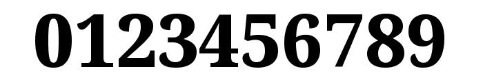 Noto Serif ExtraBold Font OTHER CHARS