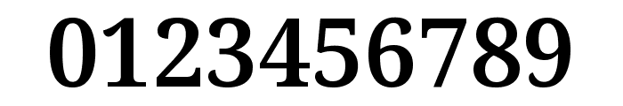 Noto Serif SemiBold Font OTHER CHARS