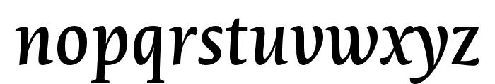 Novel Pro Medium It Font LOWERCASE