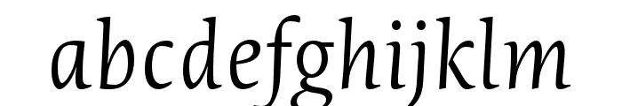 Novel Pro XLight It Font LOWERCASE