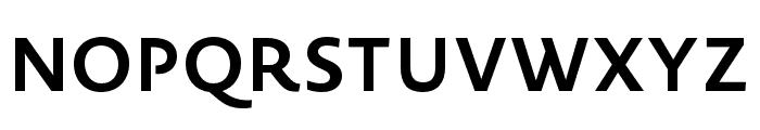 Novel Sans Pro XCmp Bold Font UPPERCASE