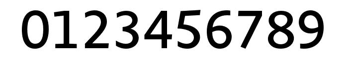 Novel Sans Pro XCmp Medium Font OTHER CHARS